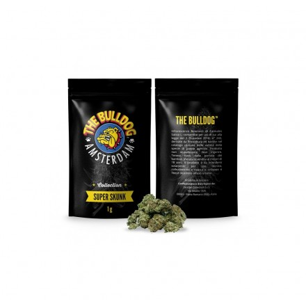 Infiorescenze femminili The Bulldog Super Skunk 1g