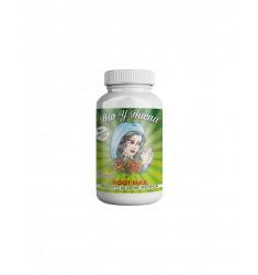 Biostimolante Root Max Bio y Buena