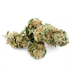 4 g Cannabis Light Cookies Oasis Hemp
