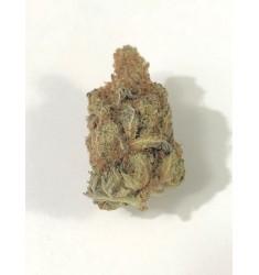 10g Cannabis Light Amnesia Oasis Hemp