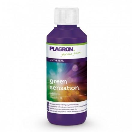 Green Sensation Plagron