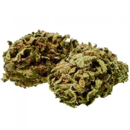 CannaBe Cannabis Light Maple Leaf 1,5g