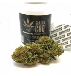 Infiorescenze femminili Sour Cream Ganesh CBD  2g