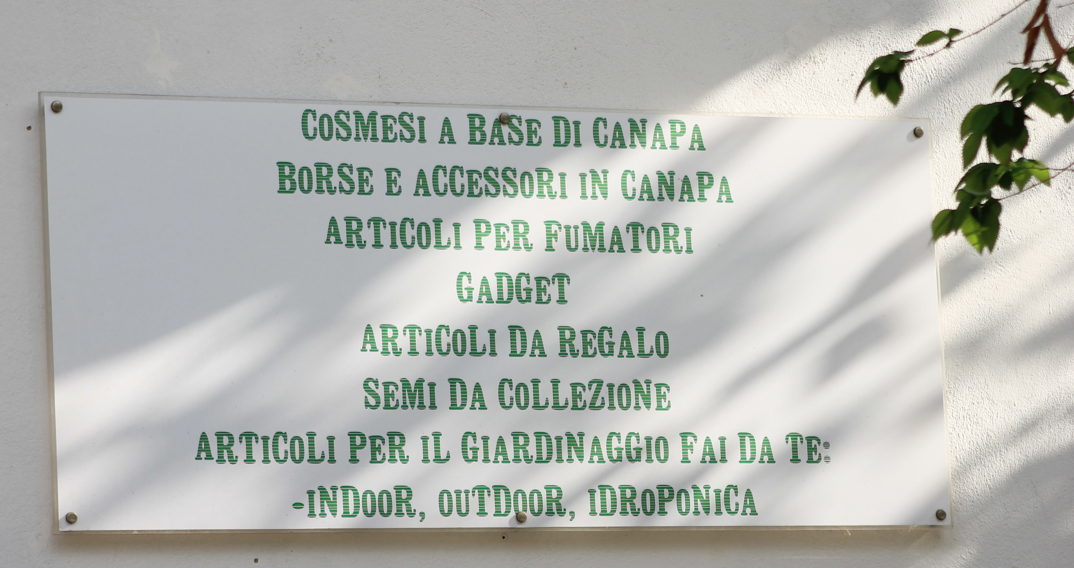 Oasis Hemp, grow shop a Matera e Gravina in Puglia