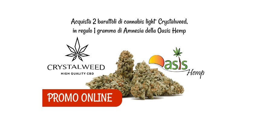 Crystalweed e Oasis Hemp: Promo sulla cannabis light